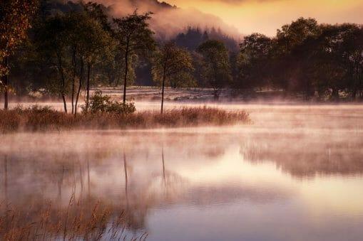 David Mould | Water & light 16
