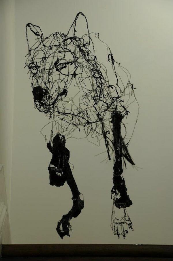 loup par David Oliveira