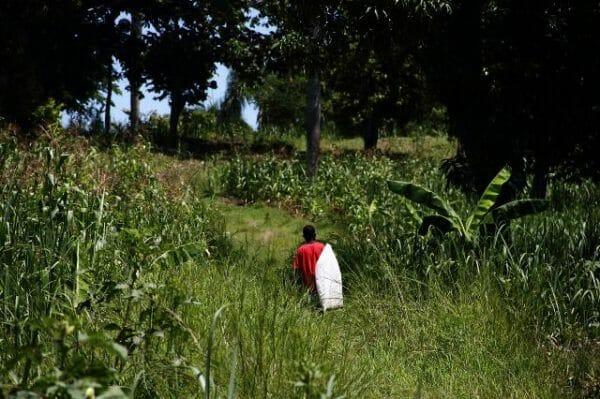 Haïti : chroniques d'un séjour 13