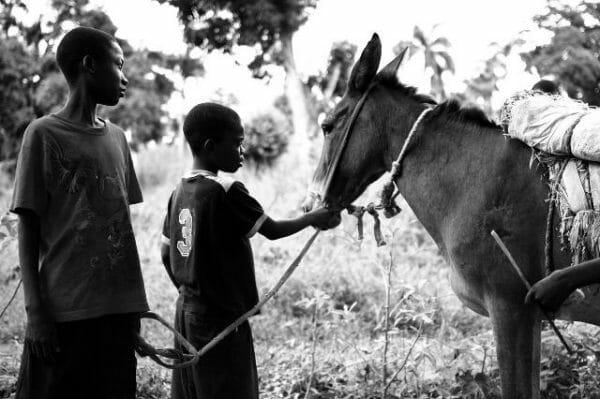 Haïti : chroniques d'un séjour 2