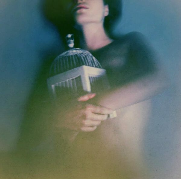 Cage - Victoria Audouard