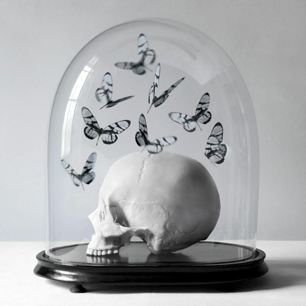 Juliette Bates photo crâne