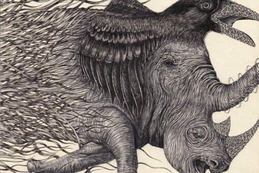 Clément Fourment dessine avec réalisme le fruit de son imagination 12