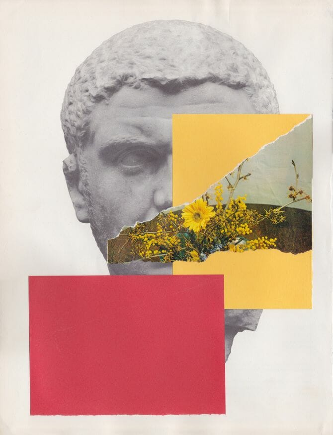 collage20