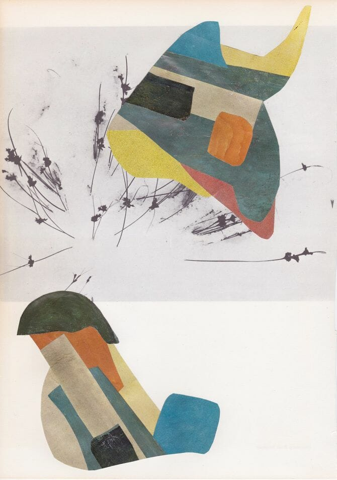 collage21