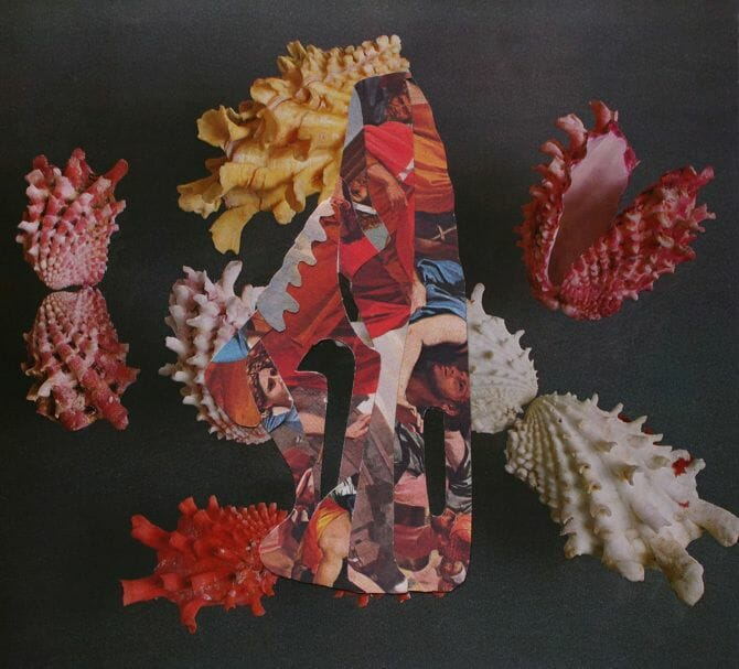 collage26