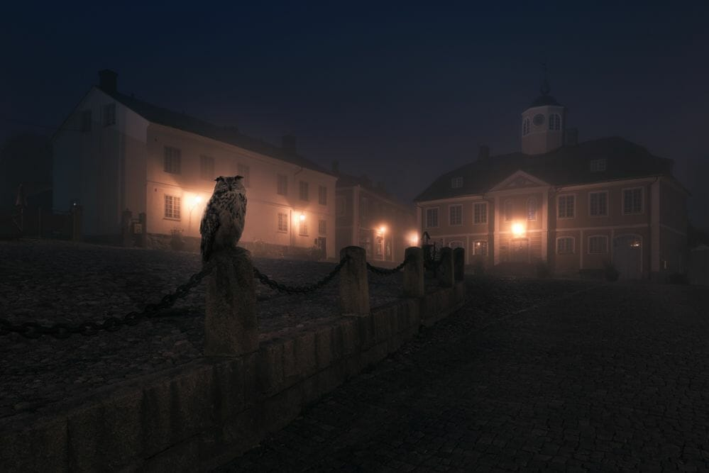 imaginaire Mikko-Lagerstedt-Owl