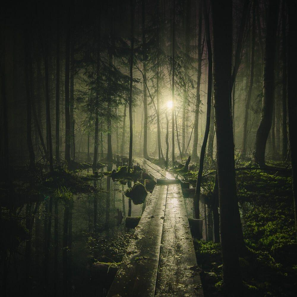 imaginaire Mikko-Lagerstedt-Pathway