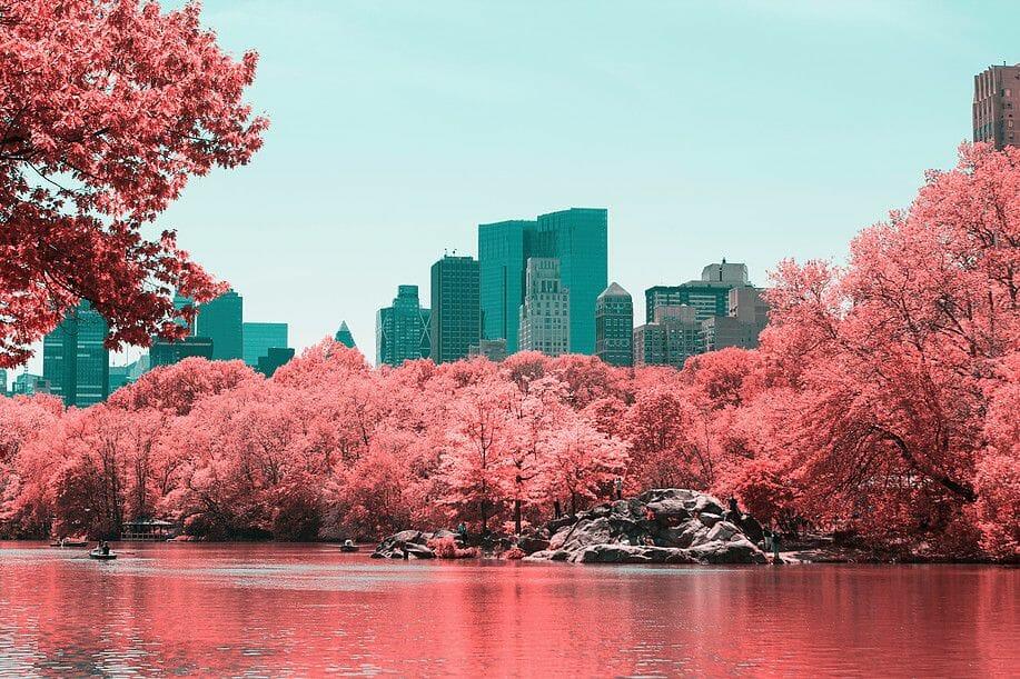 Paolo Pettigiani a capturé la ville de New York en Infra-rouge 1
