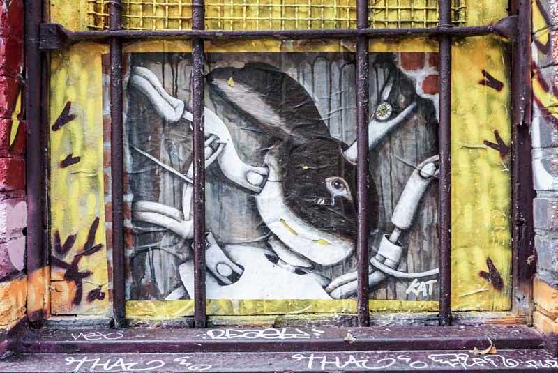 """Kat à la découverte d'un street-artist qui se veut """"dérangeant"""" 7"""