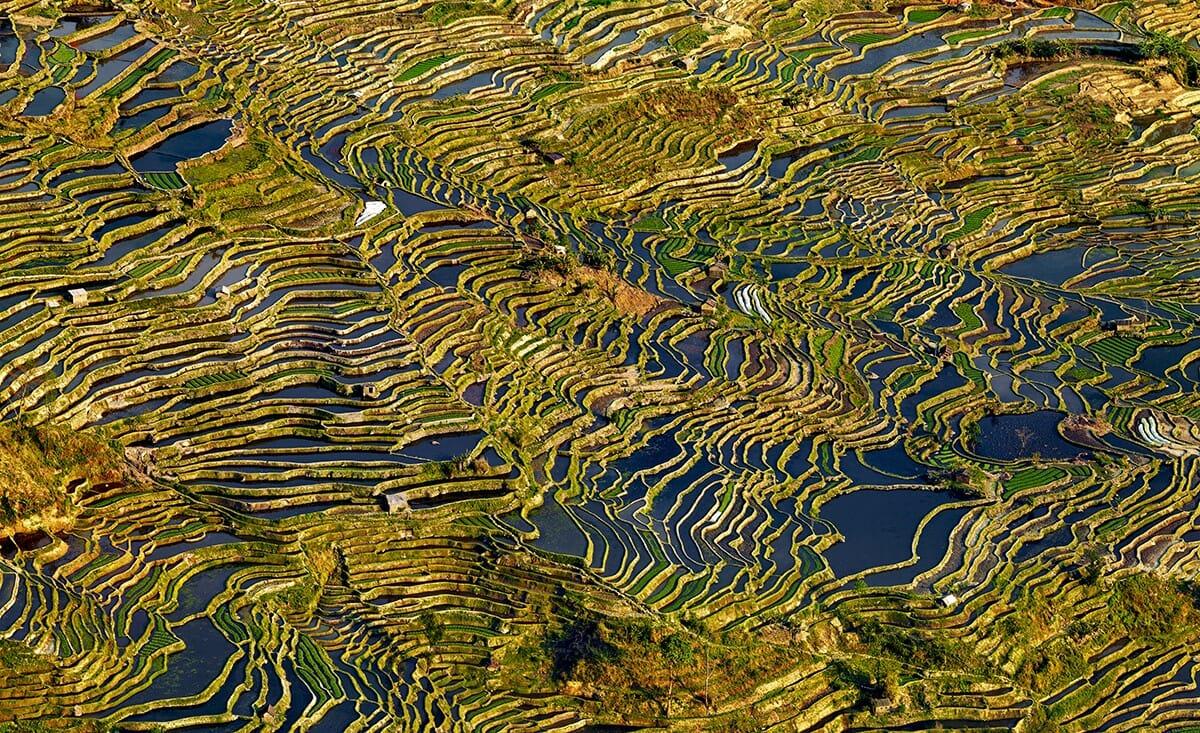 La Chine rurale dans l'œil de Thierry Bornier 3