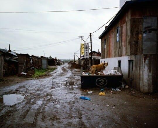 Latitude du silence : des photos lyriques et poétiques de la Chine du nord 5