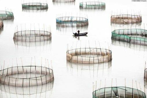 Coastal Geometries : la délicatesse graphique de l'aquaculture chinoise 20