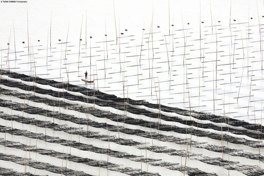 Coastal Geometries Diagonals - Fujian #19