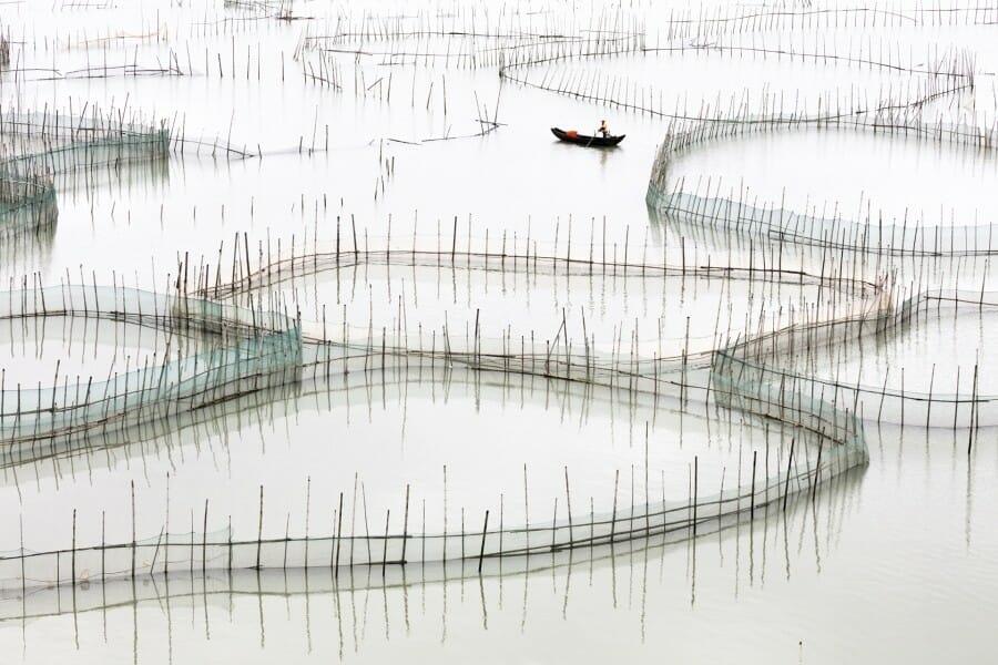 Coastal Geometries Organic - Fujian #17