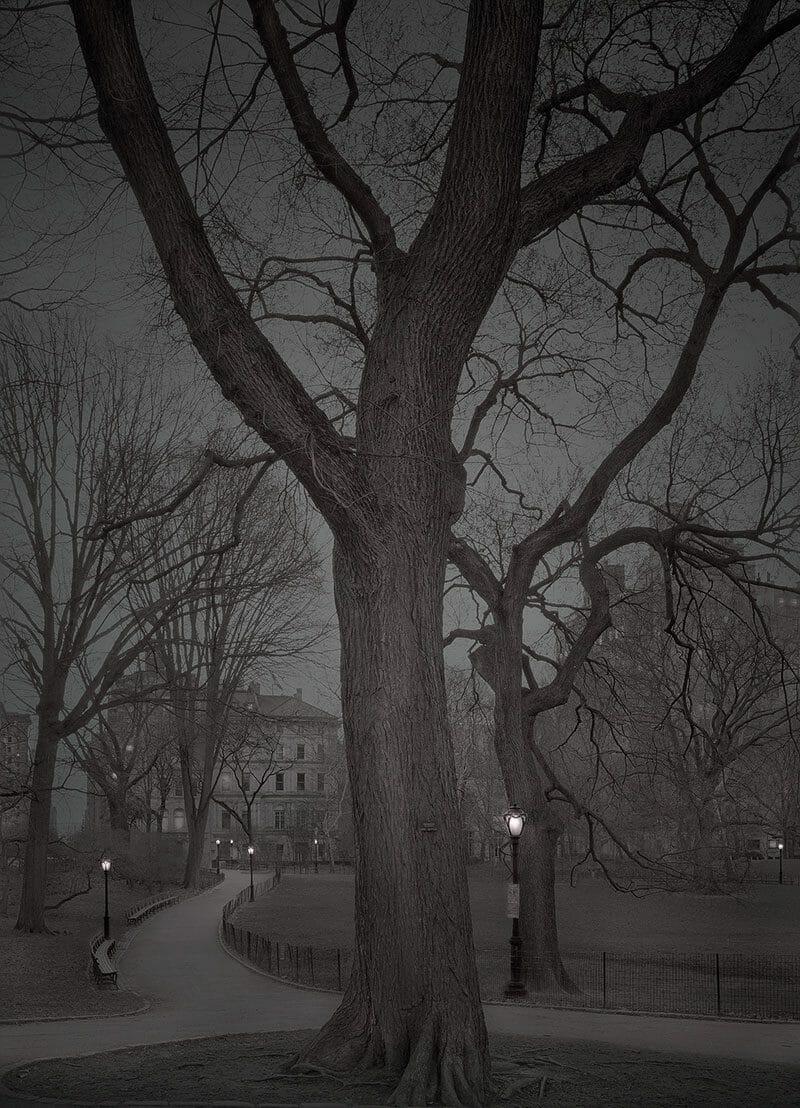 Deep In A Dream – La série de photos de Central Park prises de nuit par Michael Massaia