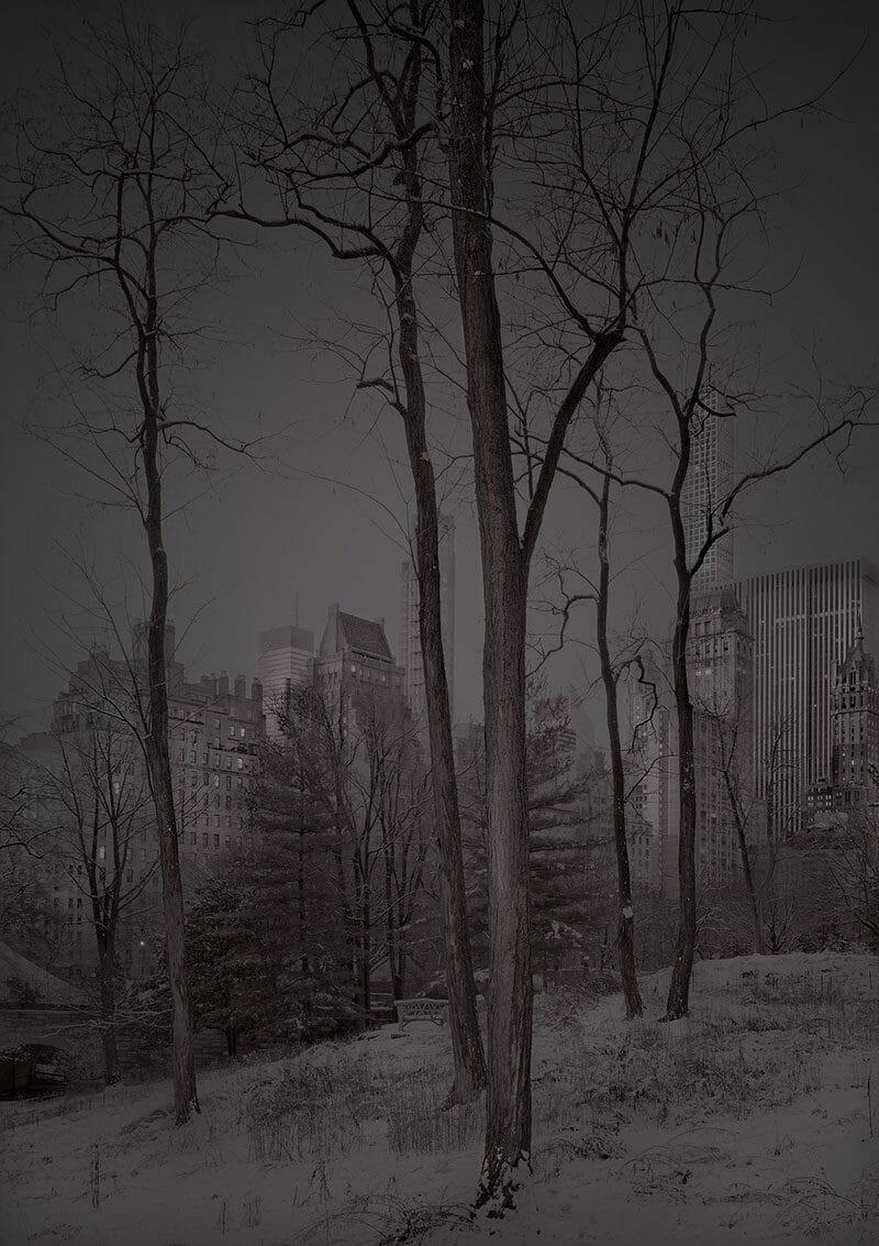 Deep In A Dream – La série de photos de Central Park prises de nuit par Michael Massaia 3