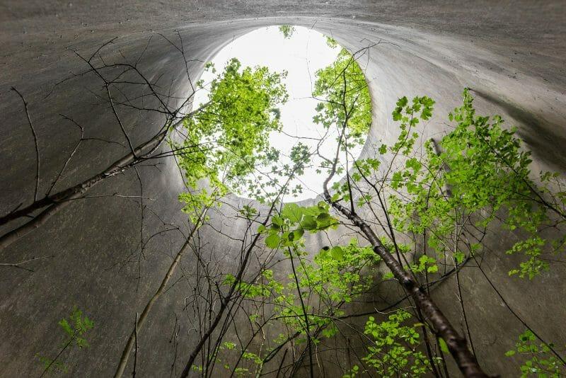 ruine photographiée par jonk livre naturalia