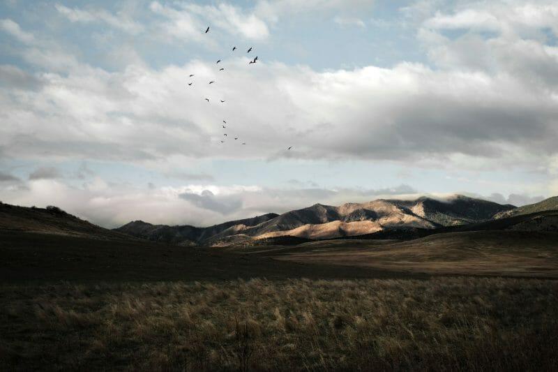 The great american west, photographies d'Alexander Davis représentant l'Amérique profonde