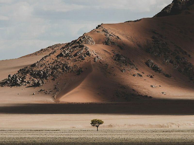 le désert de Namibie par Chris Eyre-Walker