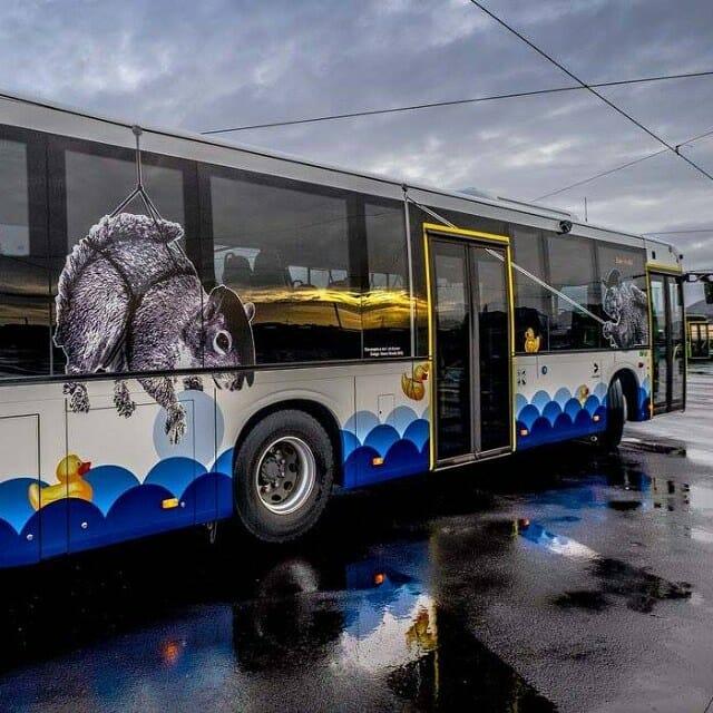street art bus hama woods