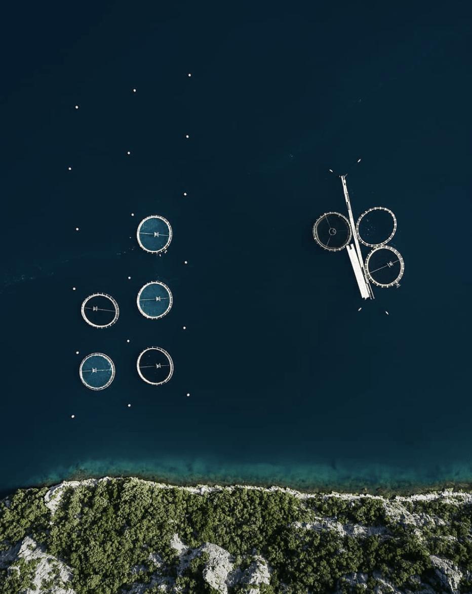 photo aérienne piscine culture Tom Hegen