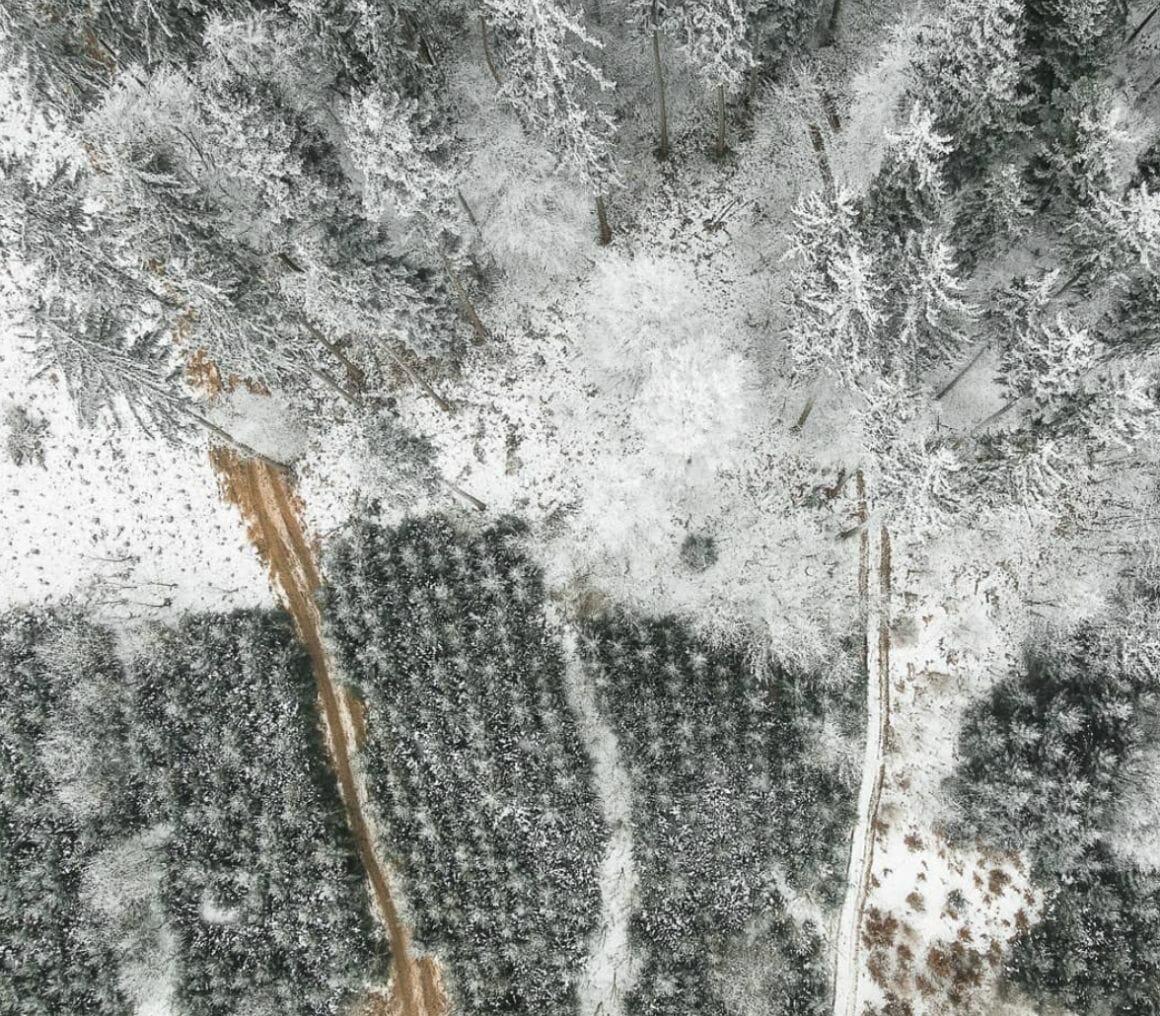 photographie aérienne nature