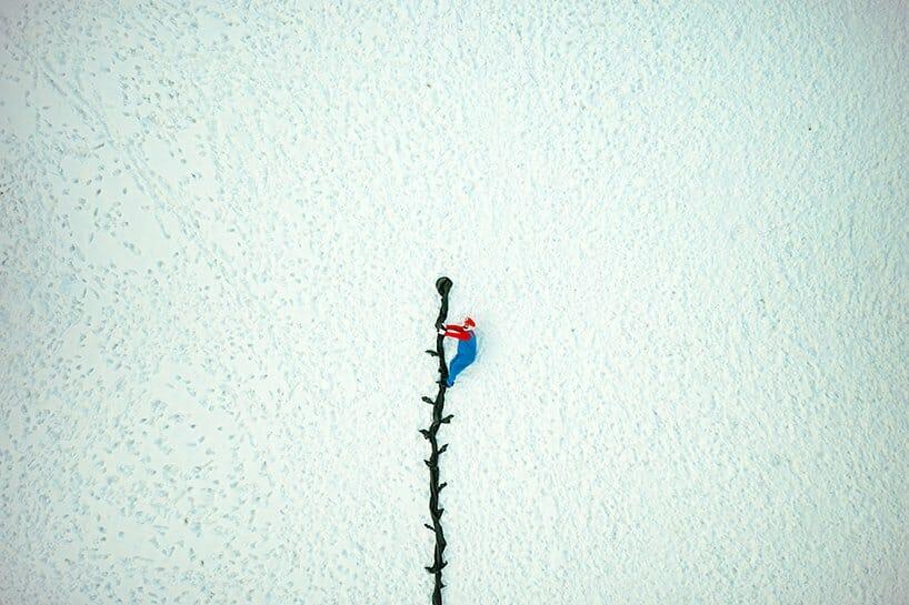photo d'une poupée de Mario qui grimpe une plante