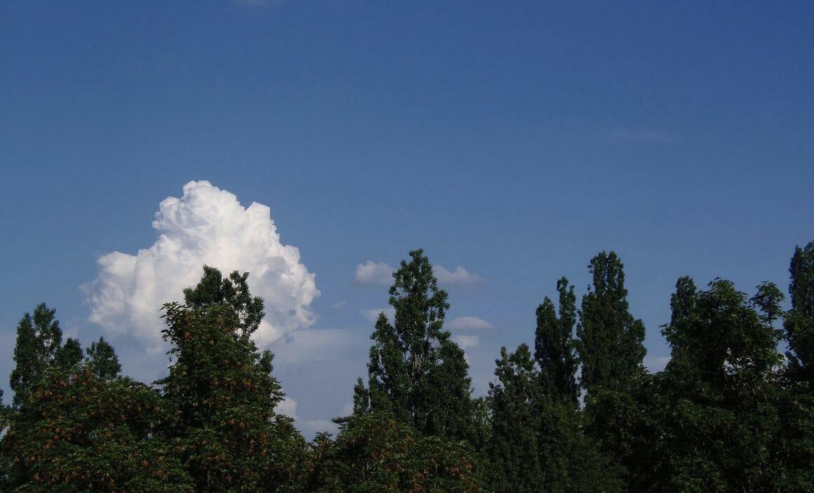 Observations, nuage de Hugo Livet