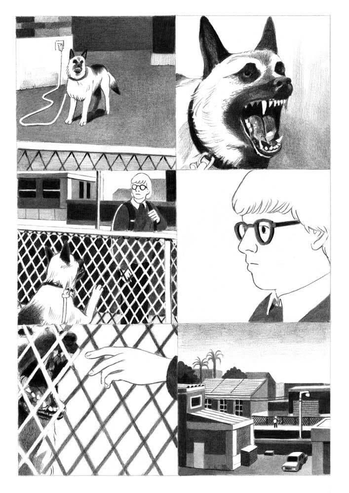 chien bd