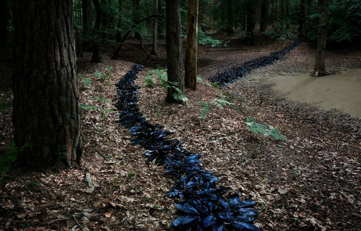 Ellie Davies a tracé un chemin grâce à du feuillage peint en bleu