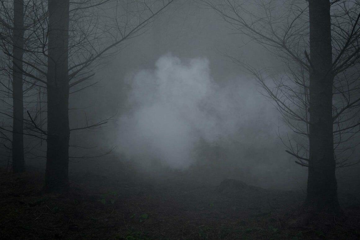 une brume inquiétant qui flotte au sein d'une forêt par le photographe Ellie Davies