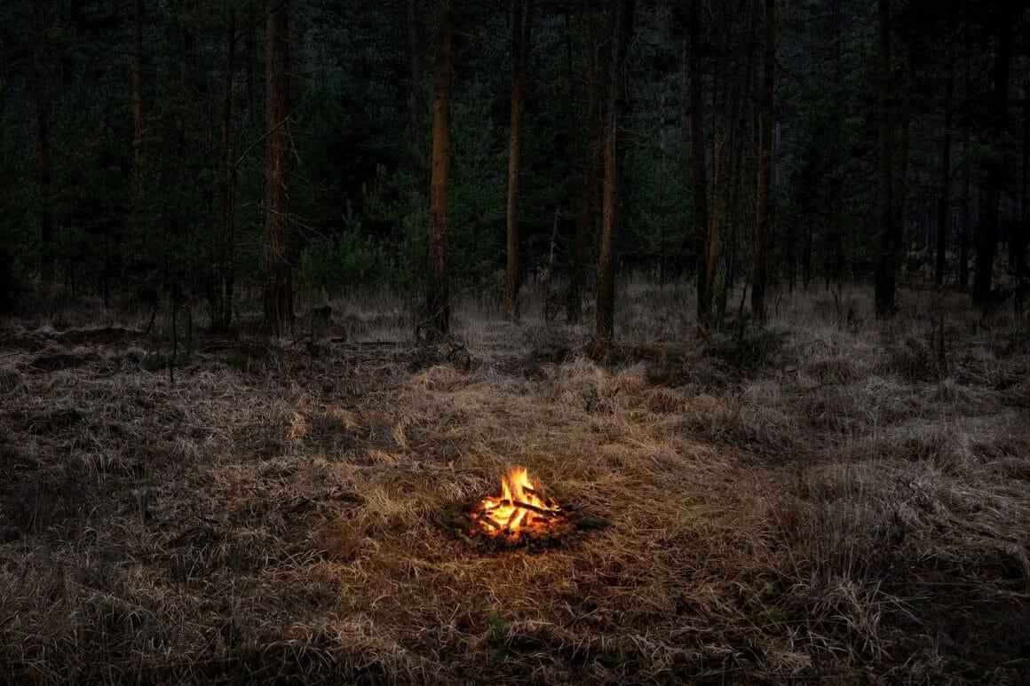 feu de camp allumé en pleine forêt photo par Ellie Davies