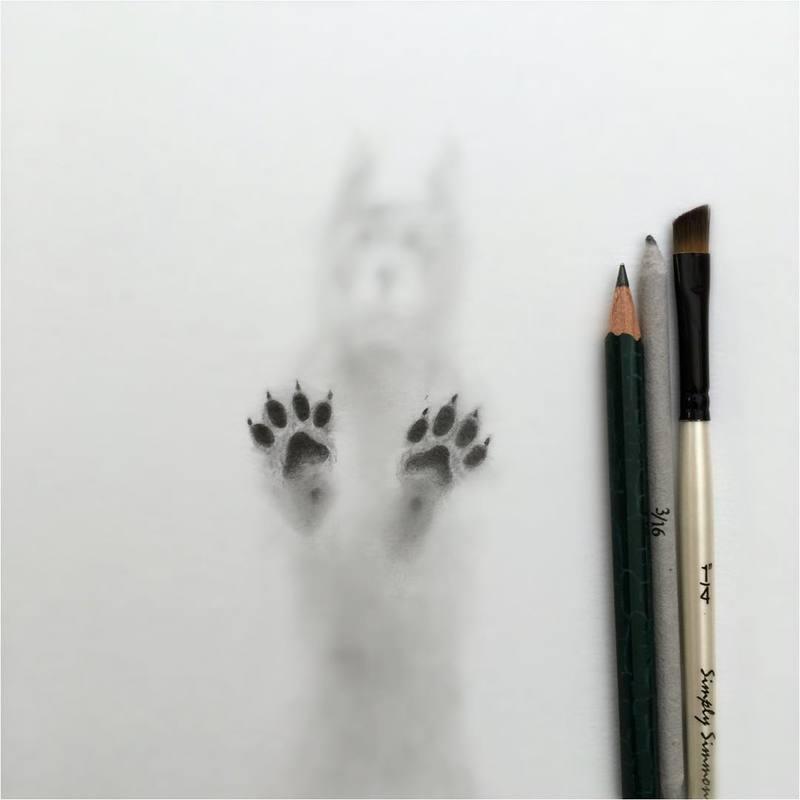 Willie Hsu chien