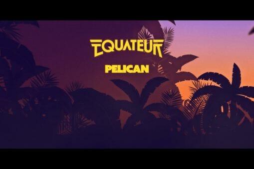 Pelican equateur