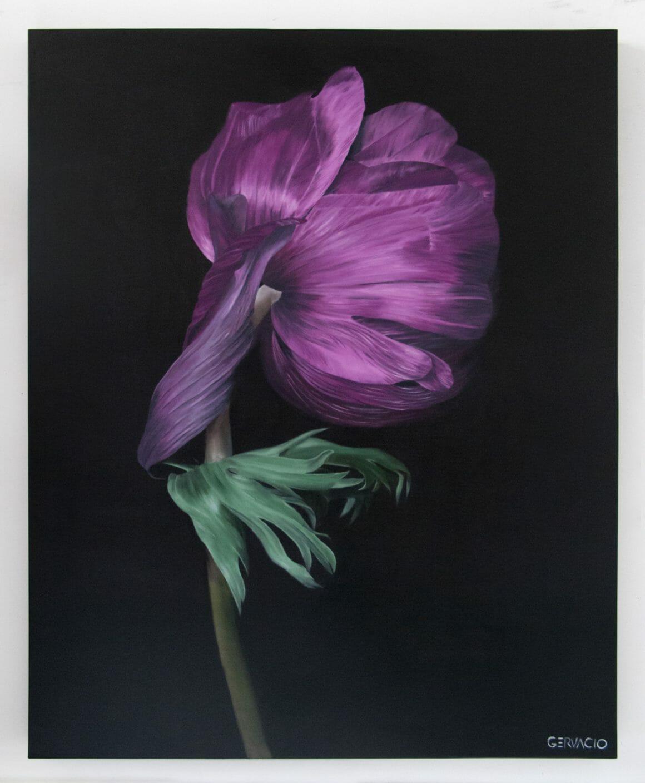fleur fannée dessin