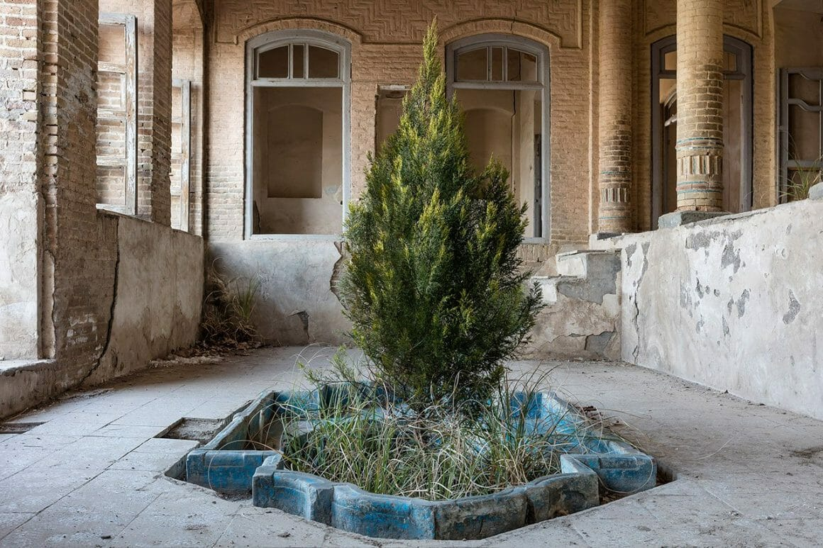 Ancienne fontaine avec un arbre qui pousse au milieu