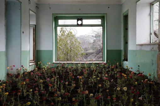 """""""Home"""", l'Iran, la Nature, la Guerre et les maisons abandonnées par Gohar Dashti. 6"""