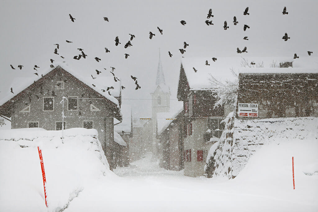 ville sous la neige avec des pigeons la  par le photographe Christophe Jacrot