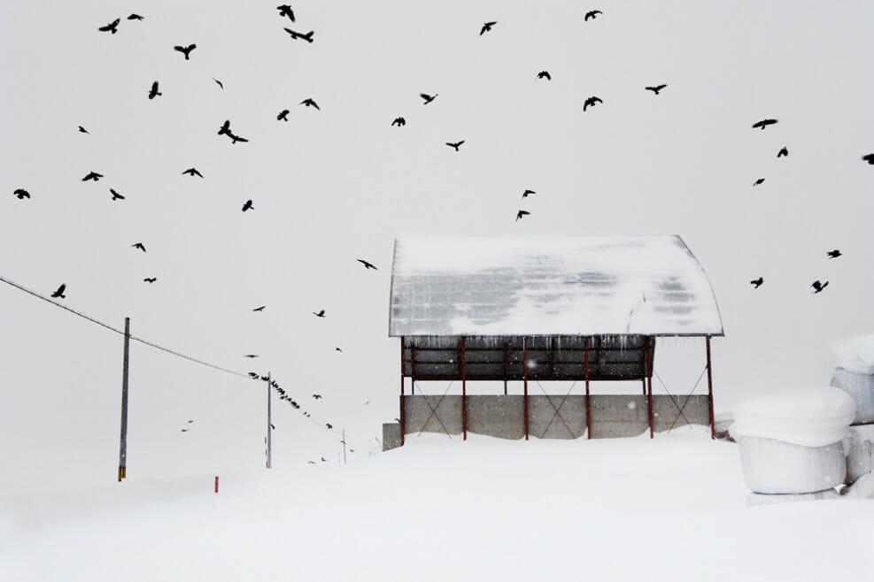 """Christophe Jacrot, photographie issue du livre d'art """"Neiges"""", Hokkaido, Japon."""