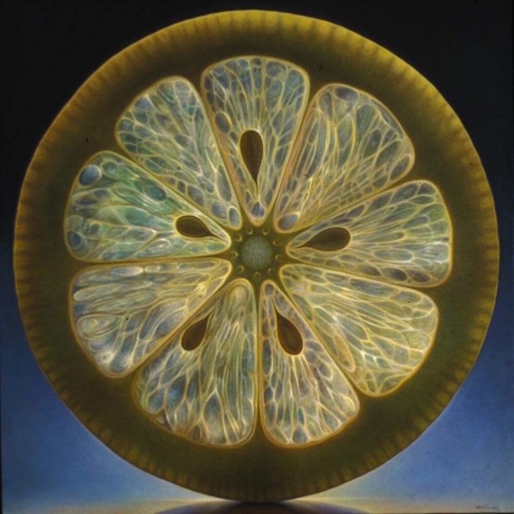 macrophotographie de citron