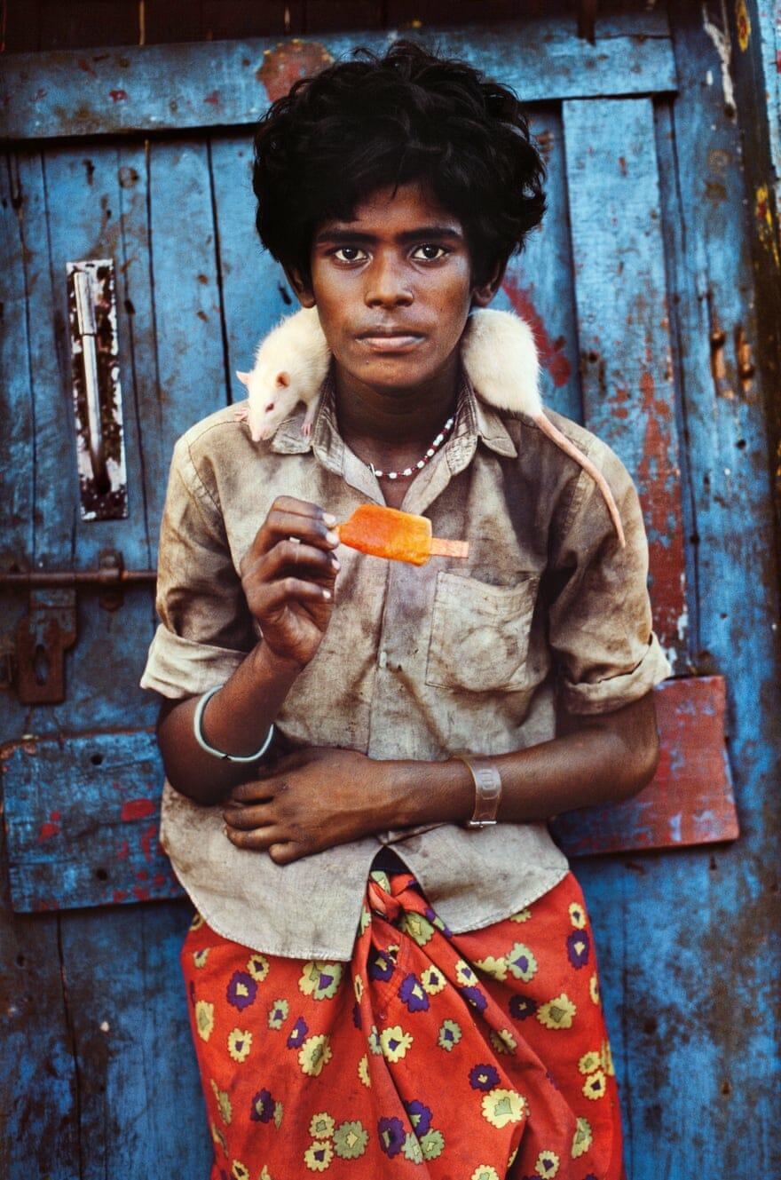 """Steve McCurry, """"Animals"""". Photographies publiées aux Editions Taschen, Inde, 1996."""