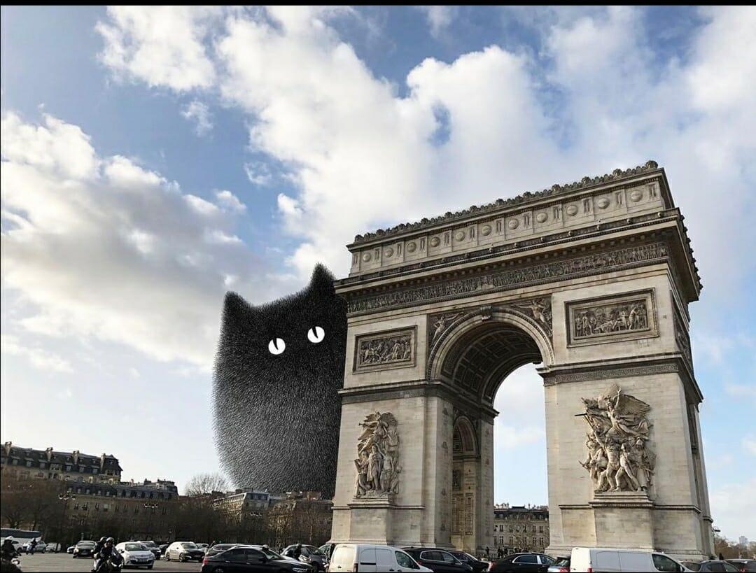 Montage montrant un des chats de Kamwei Fong à côté de l'arc de triomphe parisien, montage de l'artiste.