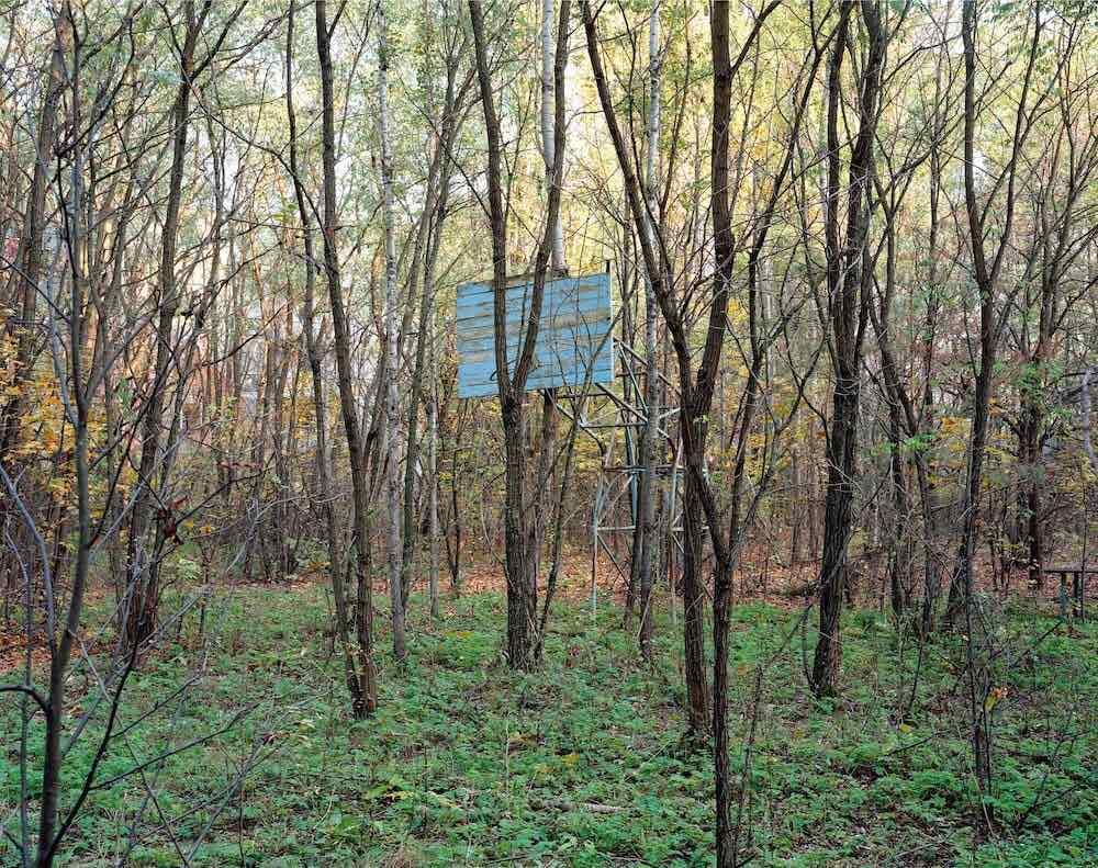 David Mcmillan, forêt avec installation en bois et métal.
