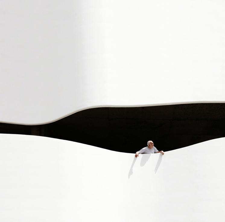 """ The Wave "" de Serge Najjar"