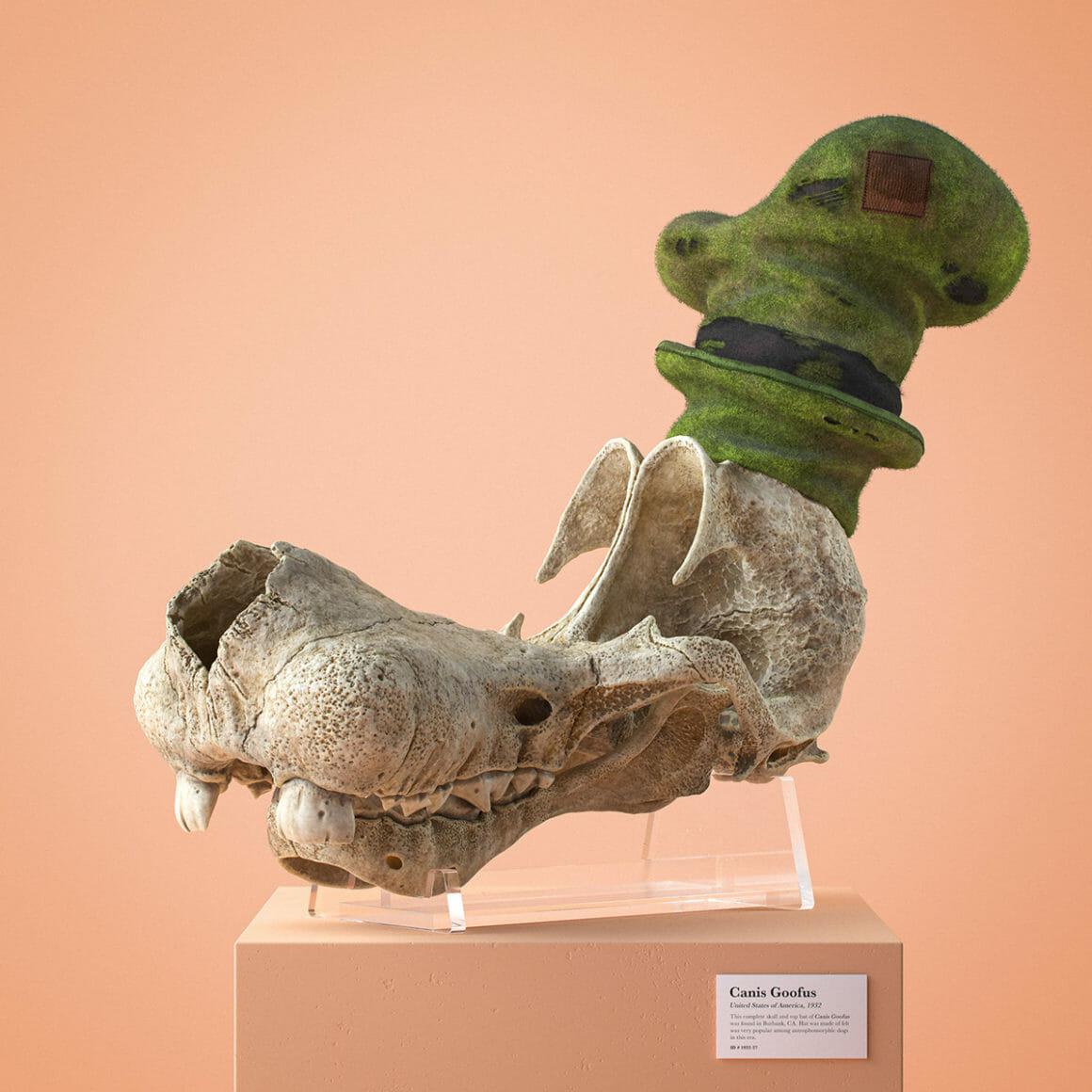 crâne de Dingo Cartoon Fossils