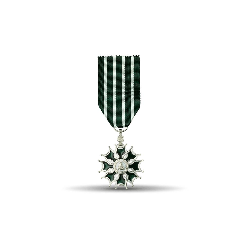 Médaille Ordre des Arts et des Lettres