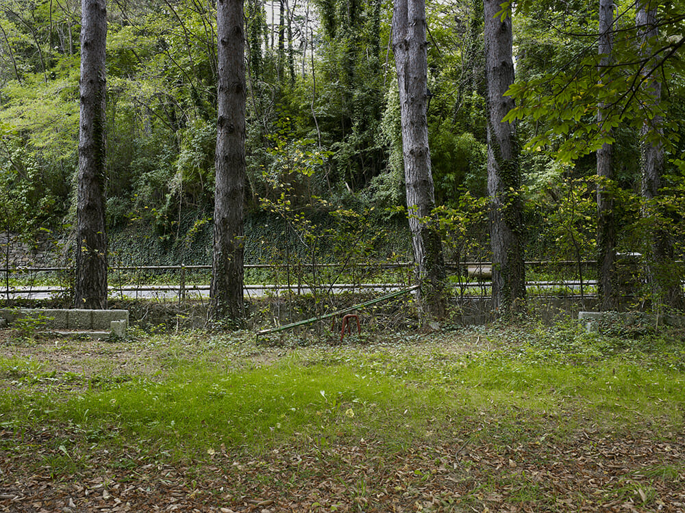 Guillem Vidal lieu abandonné herbes arbres