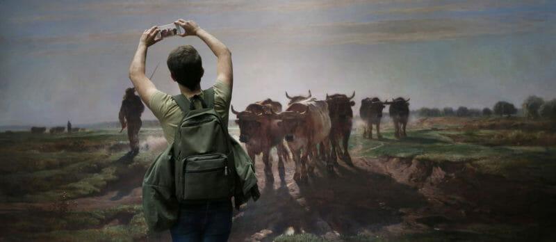 Museal Michel Gantner homme prend photo vaches