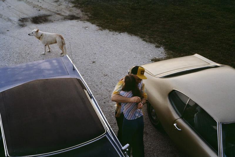 parent fille casquette jaune deux voiture bleu grise matte chien blanc